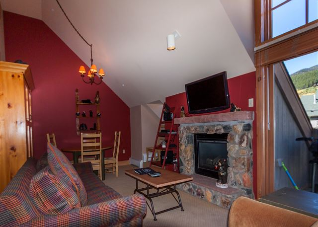 The living area features a flat screen TV mounted above a gas fireplace, a queen-sized sleeper sofa and a Murphy bed.