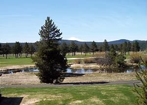 View of Golf Course & Mt. Bachelor, Bikes, 4 Unlimited SHARC Passes