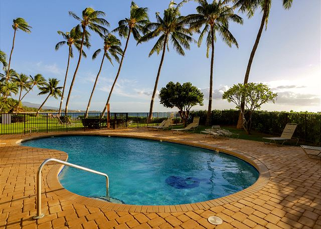 Enjoy this refreshing pool and watch the palm trees sway