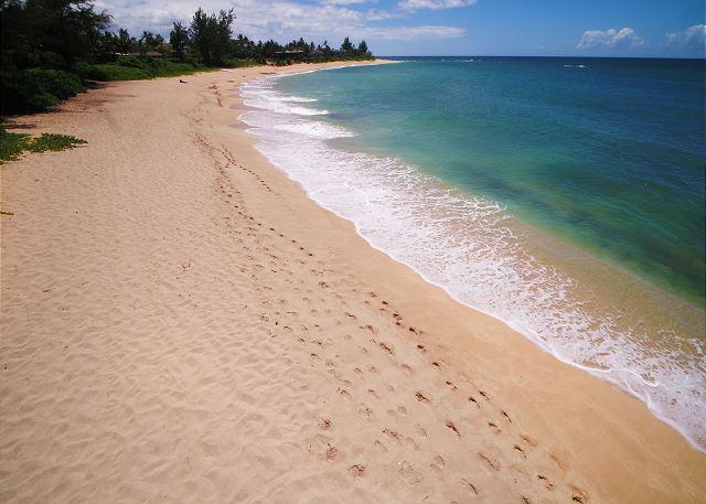 *   Hawaiian Tides