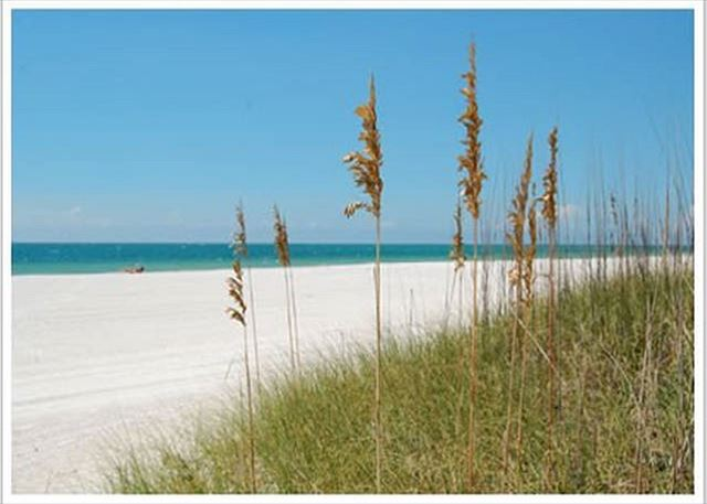 Pass-A-Grille Beach Suite 101-22