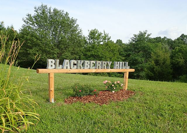 Blackberry Hill - The Holiday Life Vacation Rentals