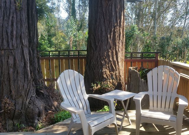Enjoying sitting beneath the Redwood trees on the front deck while barbecuing dinner.