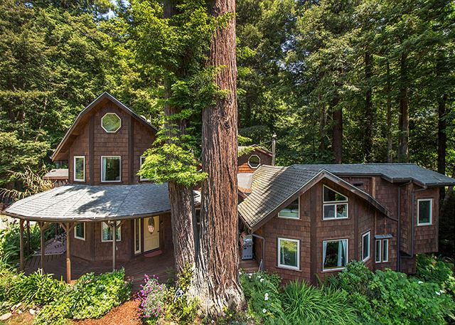Forest Creek Lodge, a sprawling 3000 sq. foot home in the woods.
