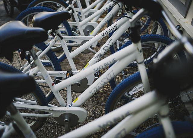 Custom 360 Blue Bikes