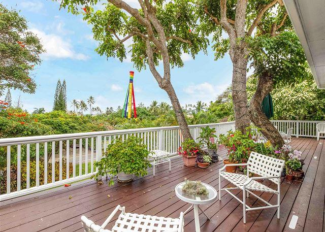 Kailua HI Vacation Rental Lush foliage and