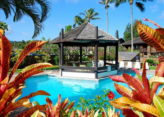 Pineapple Delight**TA088724684801 Available for 2-30night rental