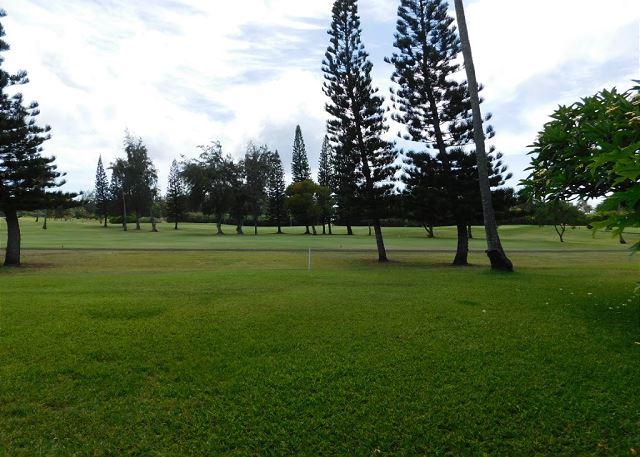 View from Lanai