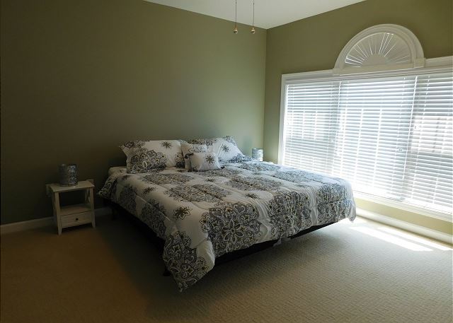 Master Bedroom with Solid King