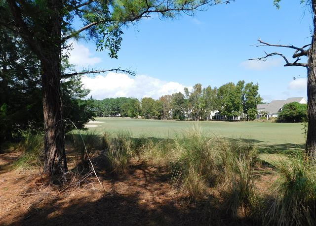 View from patio: The Norman Course