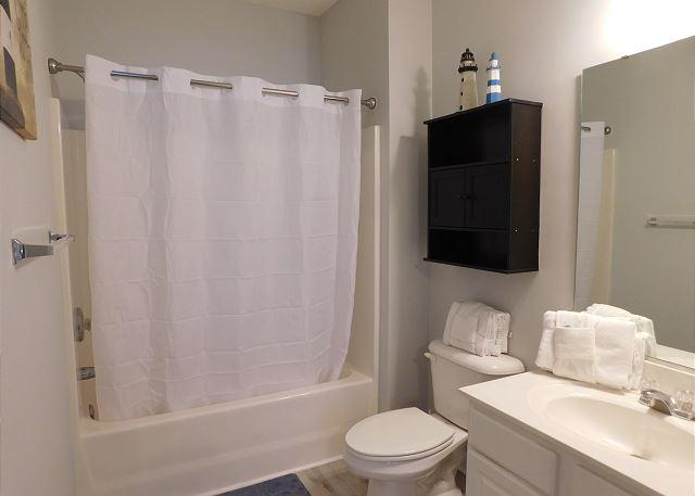 Master Bathroom tub/shower combo