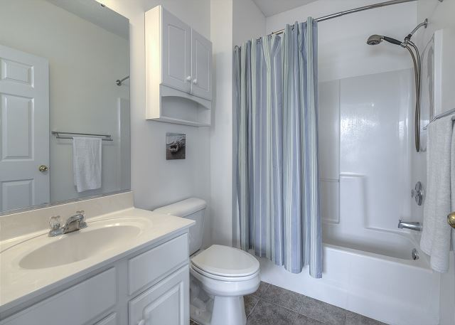 Master Bathroom - Tub Shower Combo