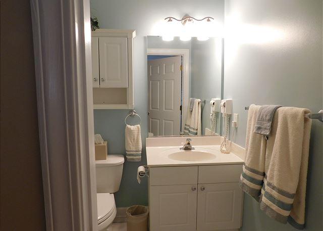 Hall Bathroom Tub/Shower Combo