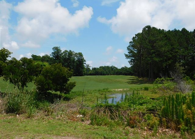 Barefoot Golf Courses