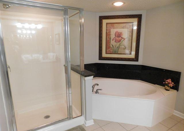 Master Bathroom Shower/Tub