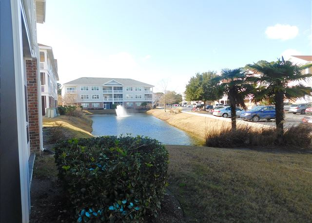 Pond outside Porch