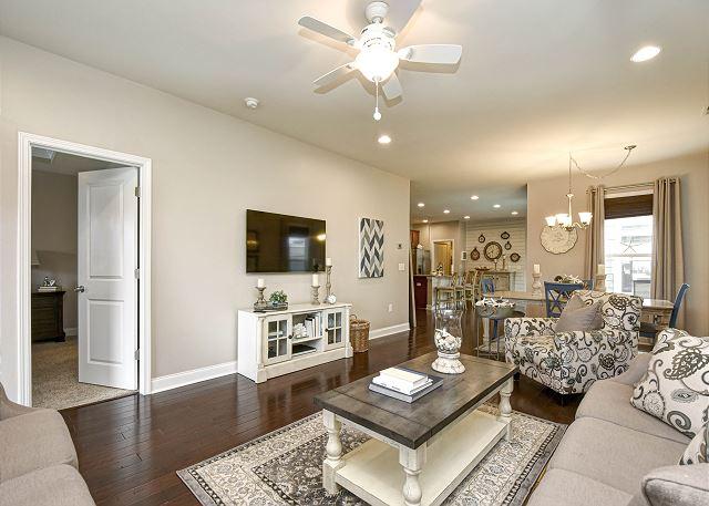 TV Area in Living Area
