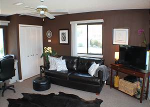 Family room with flat screen and sleeper sofa.