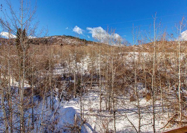 Mountain Views from Condo