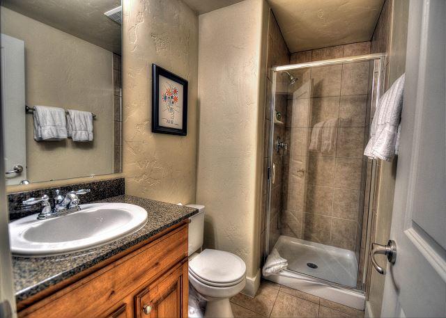 Lower Level En Suite Bathroom
