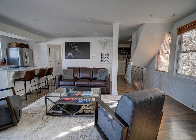 Main Living/Dining/Kitchen Area with Sleeper Sofa and Full Bathroom - Open and Bright - Great Gathering Space.