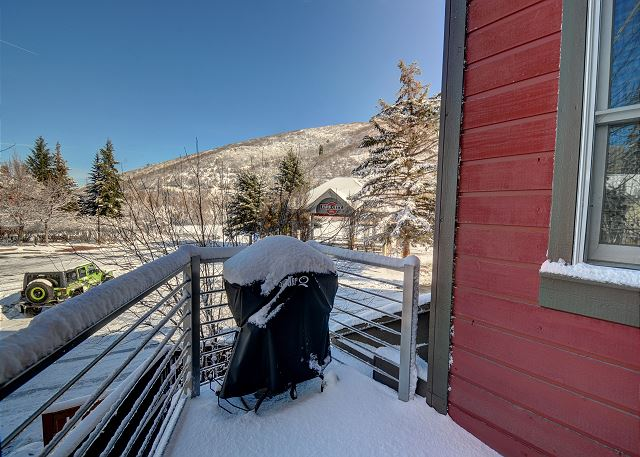 Balcony with BBQ - Winter View