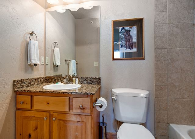 Master En Suite Bathroom - Tub/Shower Combo