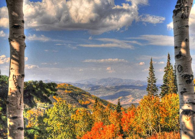 Park City Fall Views