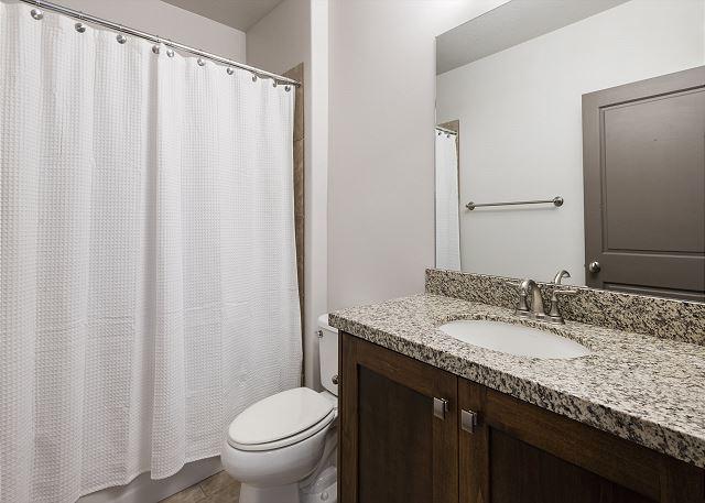 Lower Level Master En Suite Bathroom