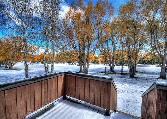3k8-snow_800w
