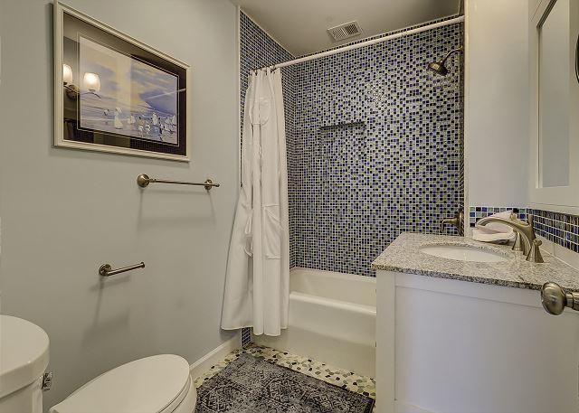 Lower Level Guest Full Bathroom