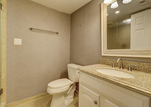 Full Guest Hall Bathroom
