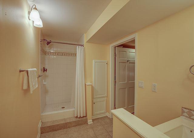 Lower Level Full Guest Bath