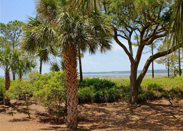 1412 South Beach Villa Picture