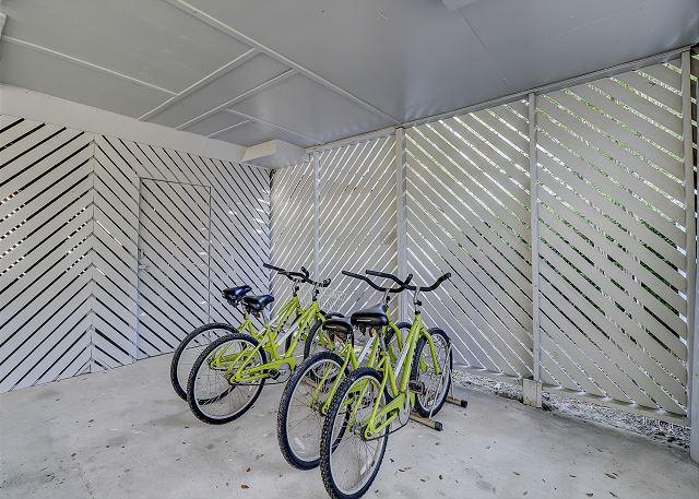 4 Adult Bikes