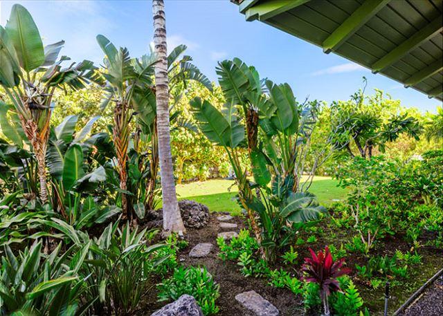 kolea garden view condo