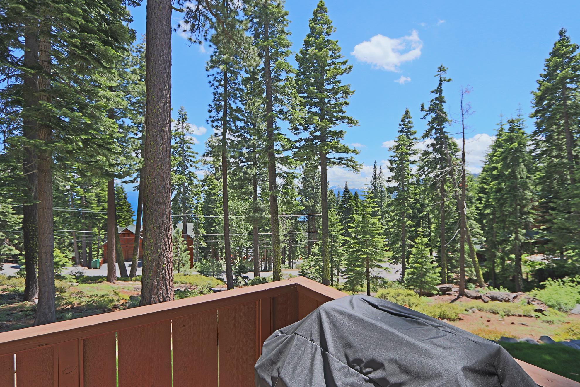 Listing Image 50 for Lago Vista
