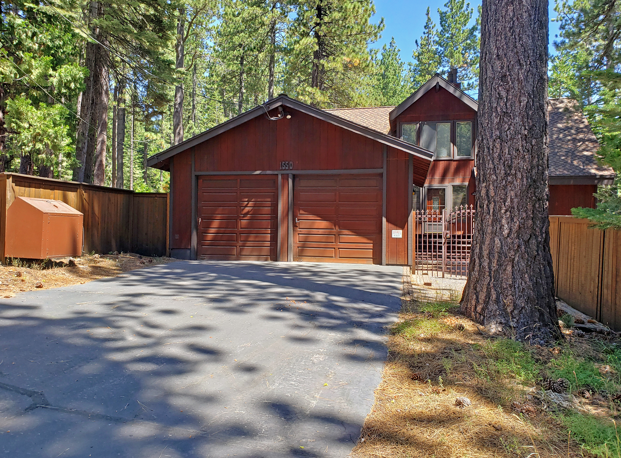 Image for Sequoia Solitude
