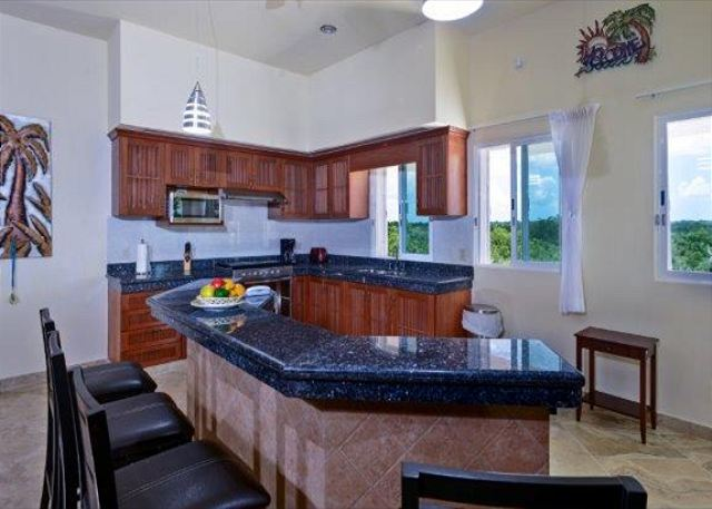 State of the Art Kitchen with granite counters